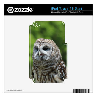 Barred Owl Skin For iPod Touch 4G