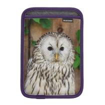 Barred Owl Sleeve For iPad Mini