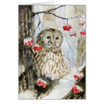 Barred owl snow winter card