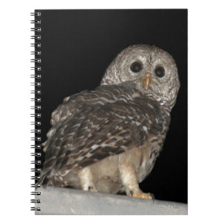 Barred Owl Spiral Photo Notebook