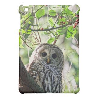 Barred Owl Staring iPad Mini Cover