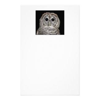 Barred Owl Stationery
