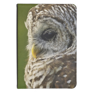 Barred Owl, Strix varia, Michigan Kindle Touch Cover