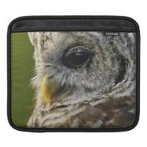 Barred Owl, Strix varia, Michigan Sleeve For iPads