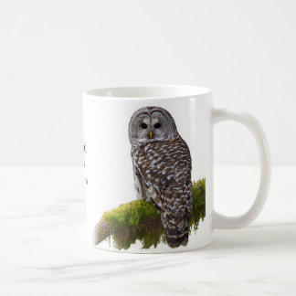 Barred Owl Strix varia Classic White Coffee Mug