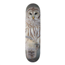 Barred Owl Strix Varia Skateboard