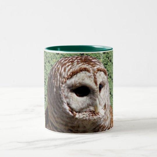 Barred Owl Two-Tone Coffee Mug