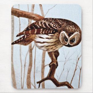 Barred Owl Vintage Wildlife Illustration Mouse Pad