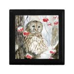 Barred Owl watercolor painting Gift Boxes