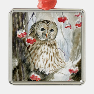 Barred Owl watercolor painting Christmas Tree Ornaments