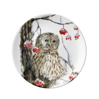 Barred Owl watercolor painting Plate
