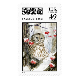 Barred Owl watercolor painting Postage