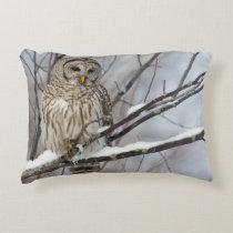 Barred Owl with a light snowfall Decorative Pillow