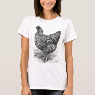 barred plymouth rock hen T-Shirt