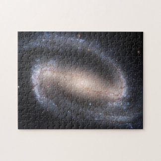 Barred Spiral Galaxy (NGC 1300) Puzzle
