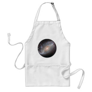 Barred Spiral Galaxy NGC 1672 Adult Apron