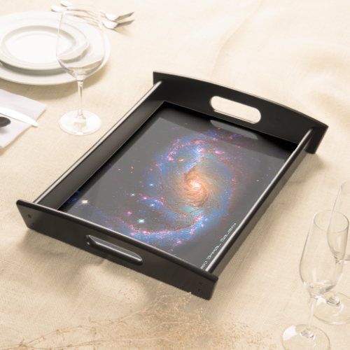 Barred Spiral Galaxy NGC 1672 Serving Tray
