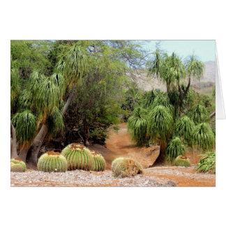 Barrel Cacti Blossoms Greeting Card