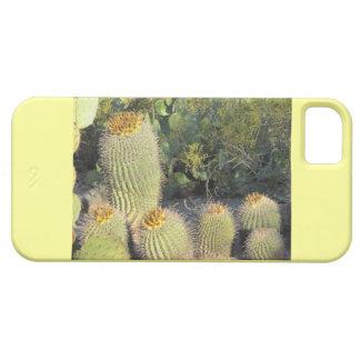 Barrel Cacti iPhone 5 Case