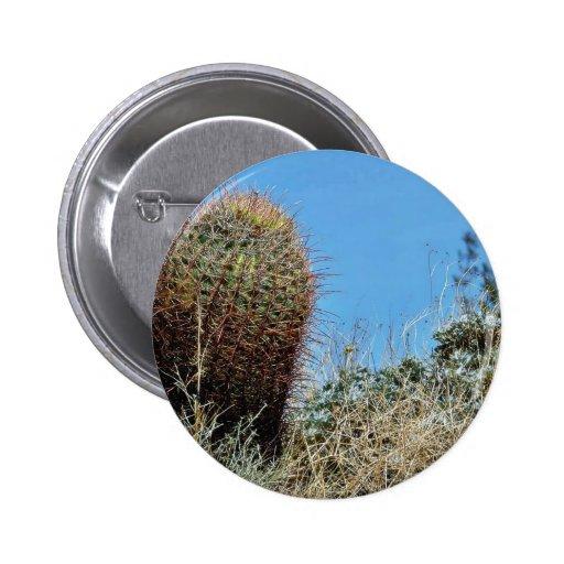 Barrel Cactus A Cactus In Anza Borrego Desert Cact 2 Inch Round Button