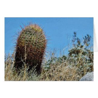Barrel Cactus A Cactus In Anza Borrego Desert Cact Greeting Card