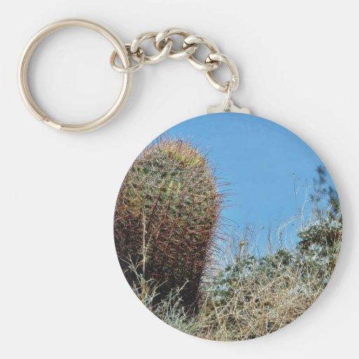 Barrel Cactus A Cactus In Anza Borrego Desert Cact Key Chain