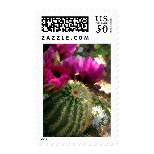 Barrel Cactus and Pink Blossom Close Up Postage