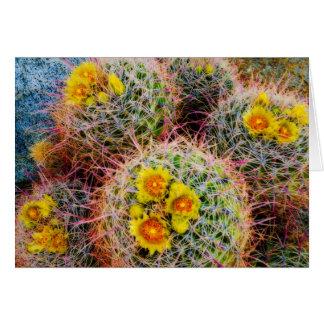 Barrel cactus close up, California Card