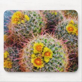 Barrel cactus close up, California Mouse Pad