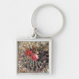 Barrel Cactus Fishhook Red Keychain