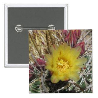 Barrel Cactus Fishhook Yellow Button