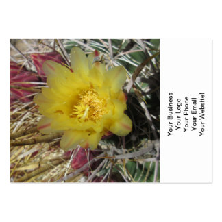 Barrel Cactus Fishhook Yellow Large Business Card