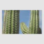 Barrel Cactus I Desert Nature Photo Rectangular Sticker