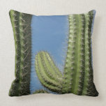 Barrel Cactus I Desert Nature Photo Throw Pillow