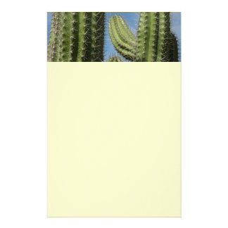 Barrel Cactus I Stationery