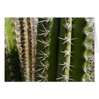 Barrel Cactus II Desert Nature Photo Card
