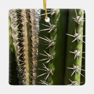 Barrel Cactus II Desert Nature Photo Ceramic Ornament
