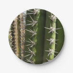 Barrel Cactus II Desert Nature Photo Paper Plate