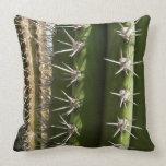 Barrel Cactus II Desert Nature Photo Throw Pillow