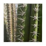 Barrel Cactus II Tile
