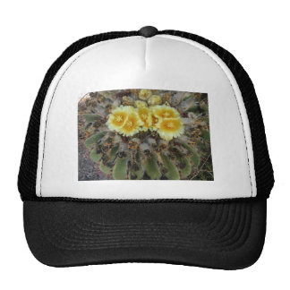 Barrel Cactus in Bloom Trucker Hats