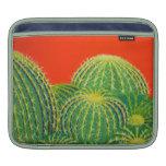 Barrel Cactus IPad Sleeve