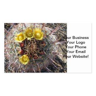 Barrel Cactus Plant Fishhook Yellow Business Card