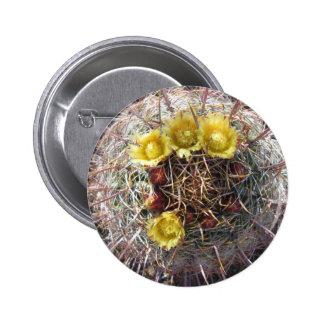 Barrel Cactus Plant Fishhook Yellow Button