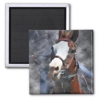 BARREL HORSE 2 INCH SQUARE MAGNET