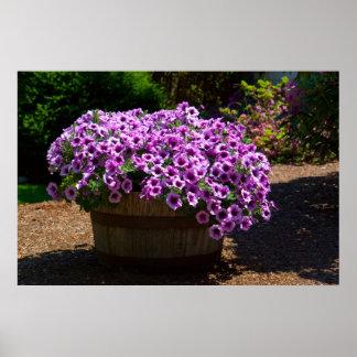Barrel of Purple Petunias Print