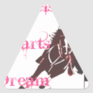 Barrel Racing Triangle Sticker
