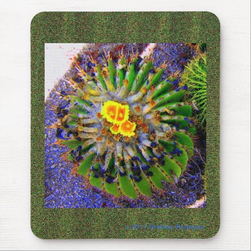 BARRELL CACTUS IN BLOOM MOUSEPADS