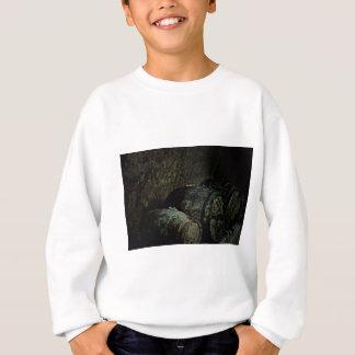 Barrels dark painterly sweatshirt