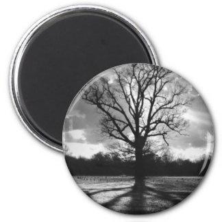Barren Branches Tree 2 Inch Round Magnet